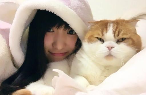 菅井友香 愛猫