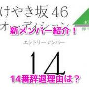 けやき坂46新メンバー