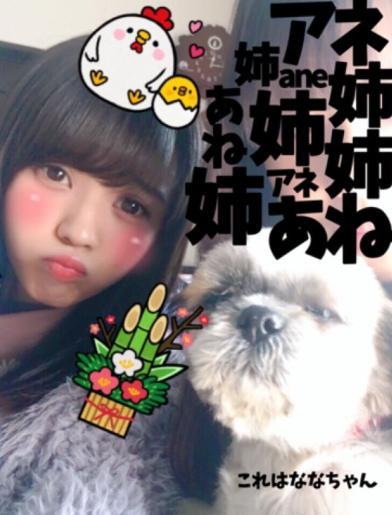 小林由依 姉