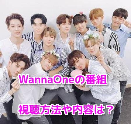 WannaOne(ワナワン)のドキュメント番組無料動画視聴方法!日本ロケや内容も
