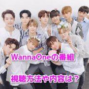 WannaOne番組